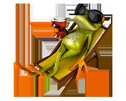Une grenouille qui boit une bière
