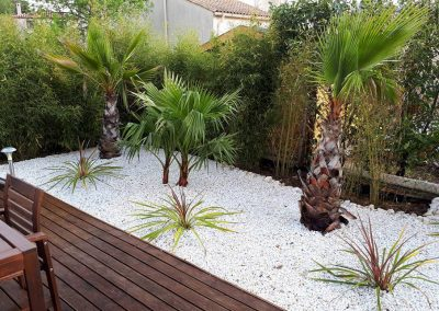 Aménagement d'un jardin Méditerranéen avec des palmiers