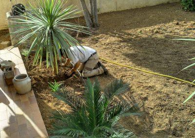 Aménagement d'un jardin avec plantation méditerranéenne